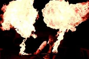 Jason D'Vaude Art of Fire Show