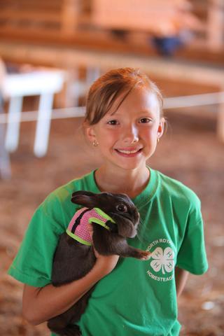 Small Animal Evaluations