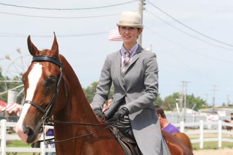 Cuyahoga County Fair Horse Show