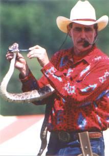 Texas Rattlesnake Demonstration