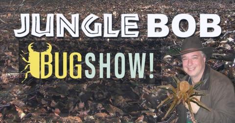 Jungle Bob Tuma Bug Show