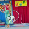 Skin & Bones Comedy Animal Circus